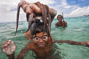 swimming-with-cephalopod